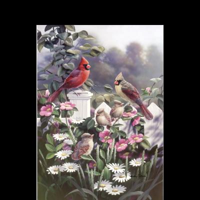 Cardinals 'n' Babies