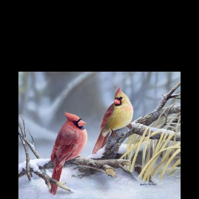 Cardinals at Dusk