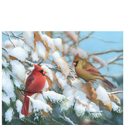 A Crisp Winter Day - Cardinals