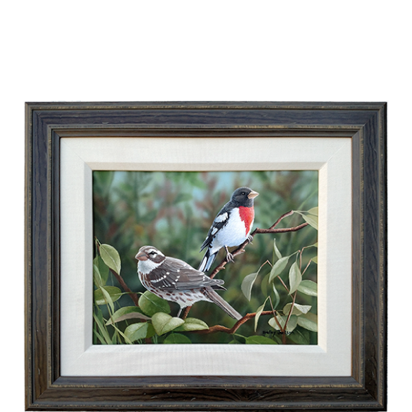 New Arrivals - Rose Breasted Grosbeaks - original artwork