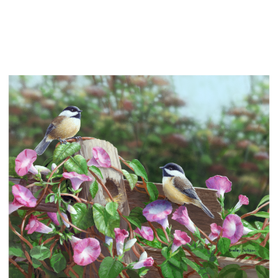 Glorious Morning - Chickadees