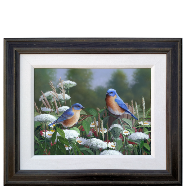 Lacey Blues - Eastern Bluebirds - original artwork