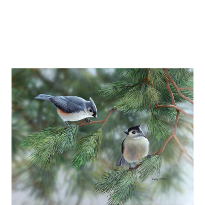 Sharing a Moment - Titmice