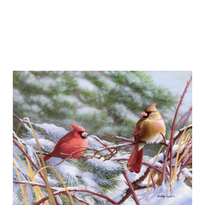 winter_cardinals