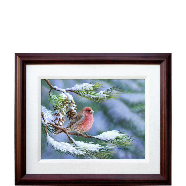 Winter Perch - House Finch - original artwork