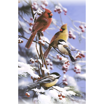 Winter Retreat - Cardinals